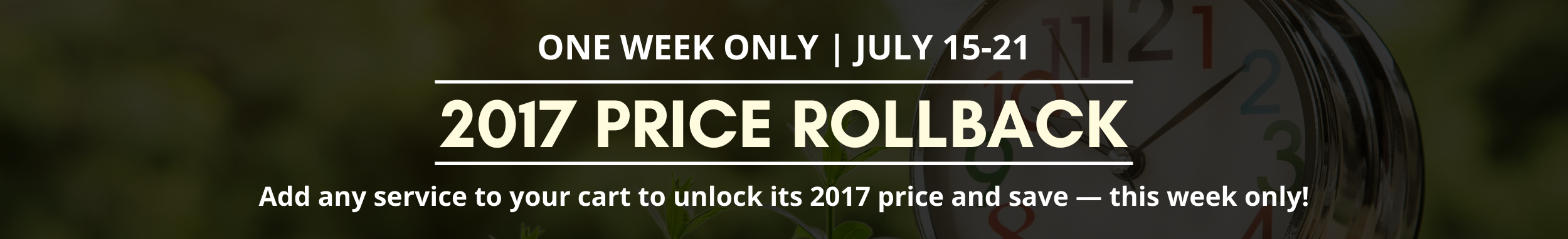 Price Rollback - Banner